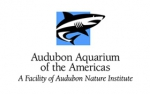 Audubon Aquarium New Orleans